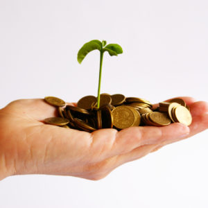 Choosing Small Business Loans over Seed Money