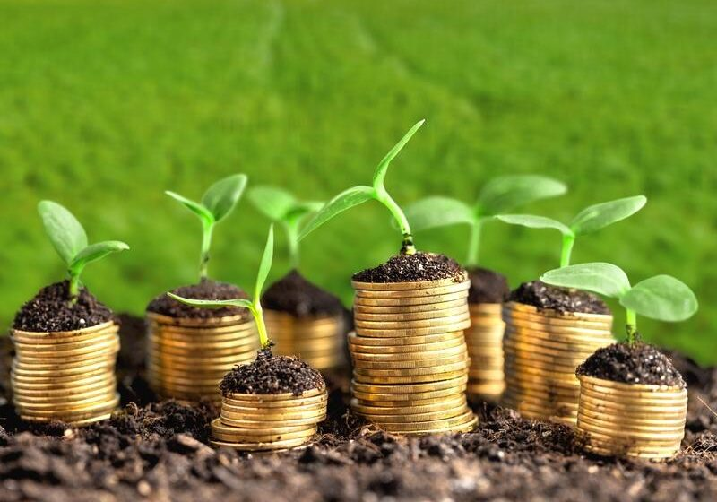 Green Renovations a Small Business Loan Can Help You With